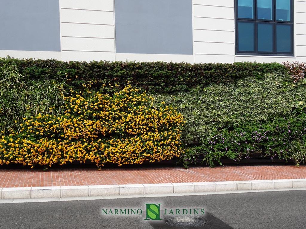 Des portions de murs végétaux à Monaco