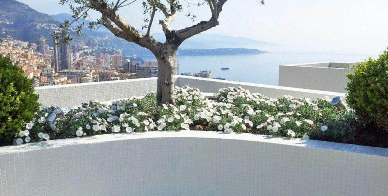 Entretien de jardinière sur le toit d'un immeuble à Monaco