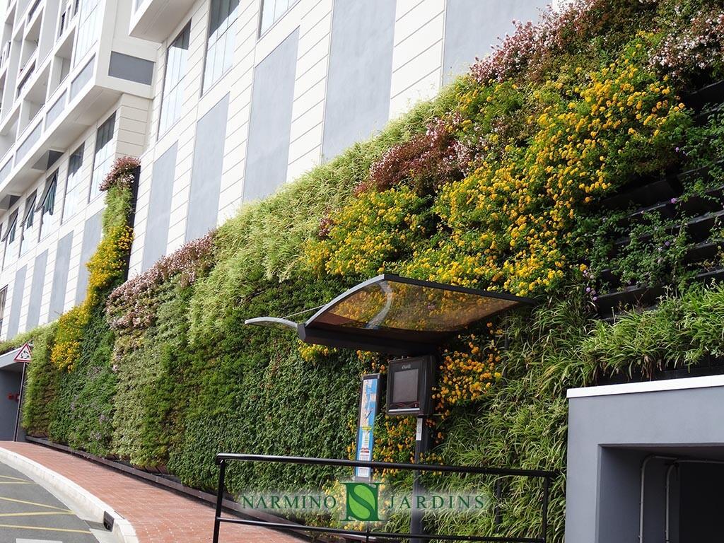 Mur végétal en façade d'immeuble