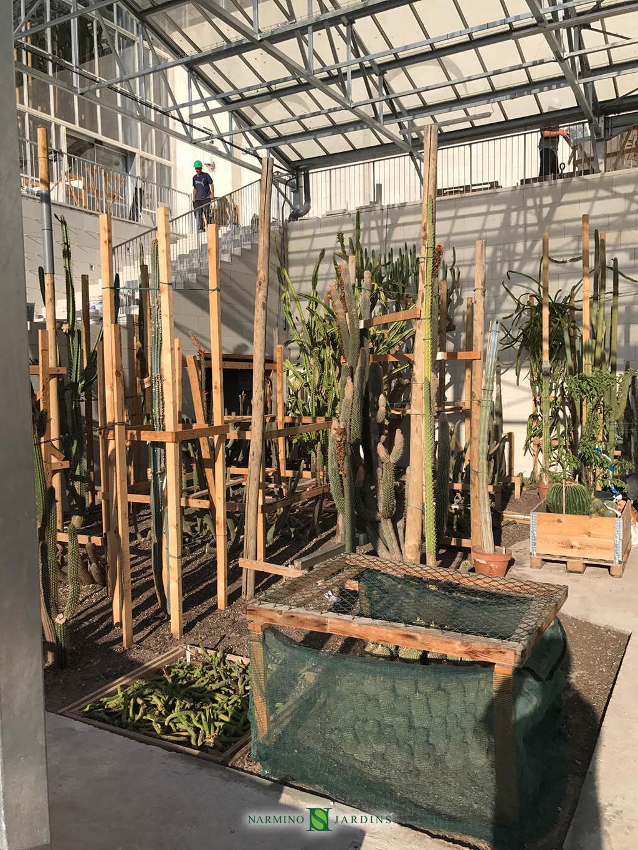 Aménagement des nouvelles serres du Jardin Exotique