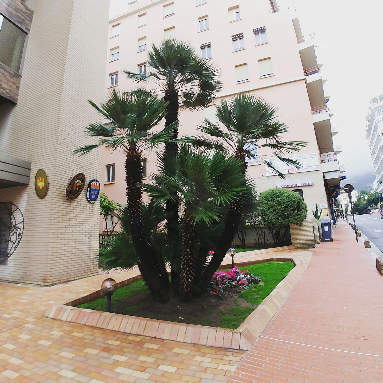 Jardinière urbaine à Monaco