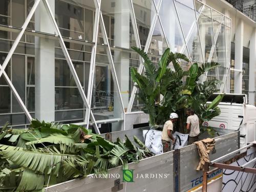 Nos équipes s'affairent pour préparer le levage des palmiers