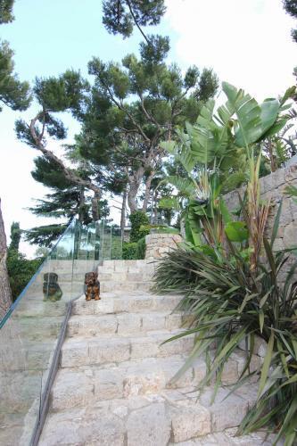 Les escaliers mentant aux jardins inférieurs