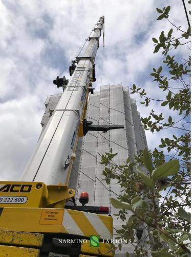 Levage de grandes quantités de plantes pour un chantier de construction à Monaco