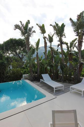 Des palmiers majestueux entourent la piscine