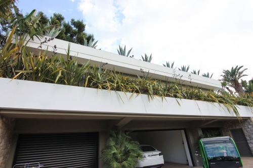 Les toitures végétales sont nombreuses dans cette maison