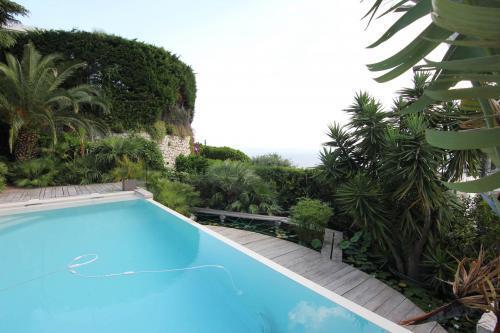 La piscine et la végétation environnante