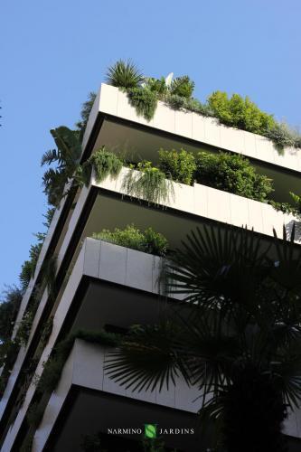Des plantes exotiques et plus classiques ont été plantées