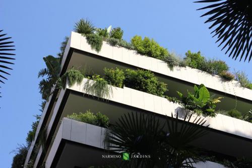 Les somptueuses jardinières fleuries de la Petite Afrique à Monaco