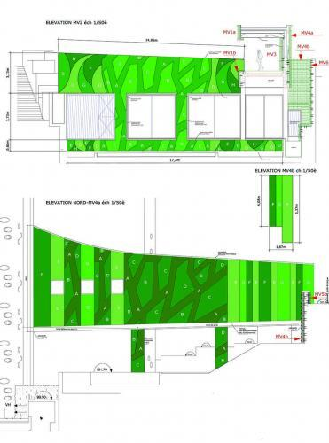 Plan d'un mur végétal