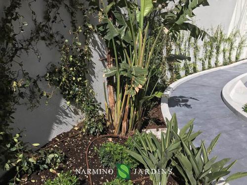Les jardinières du Stella entretenues par Narmino Jardins