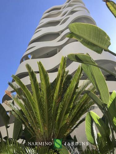 Beautiful plants shine in the sun in the green spaces of this building
