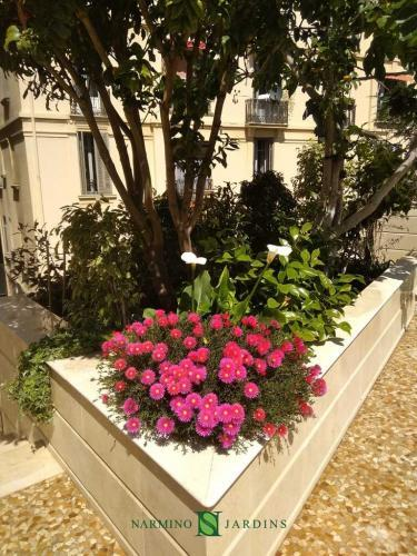 Pink flowers embellish this planter