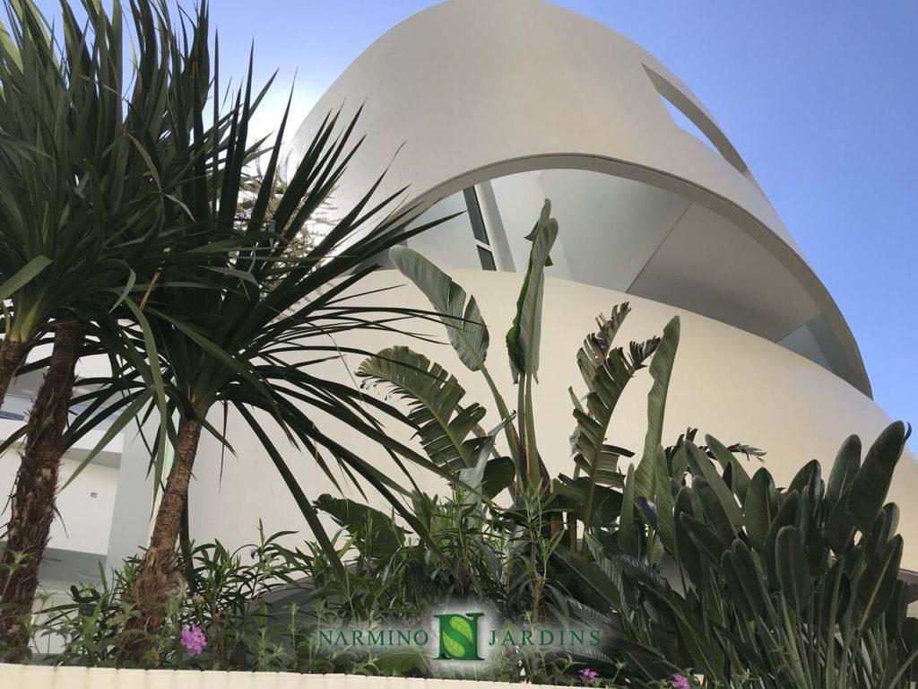 Une architecture audacieuse, des plantes foisonnantes
