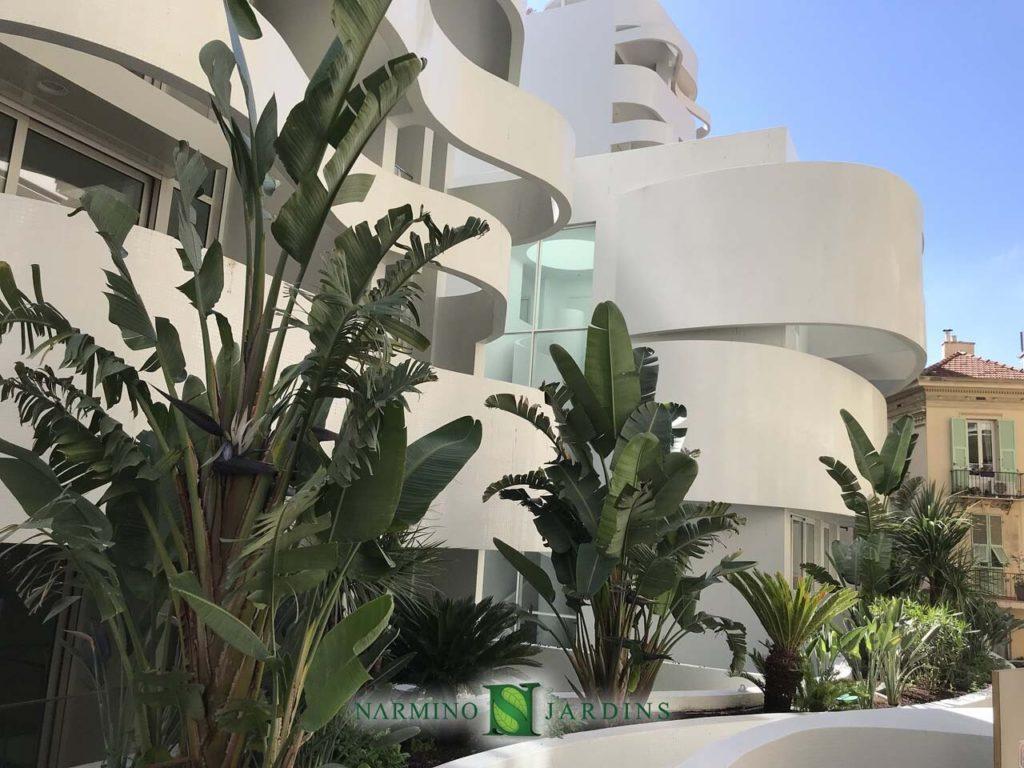 Narmino Jardins, entreprise de jardinage à Monaco